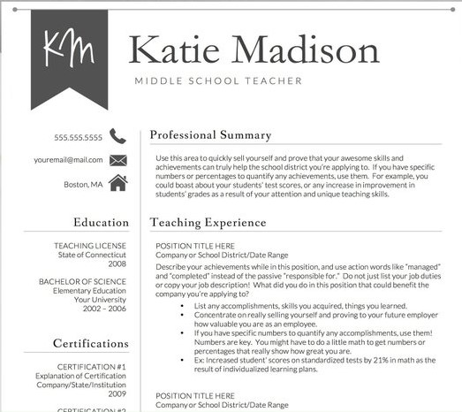 Teacher Resume Sample Template 2
