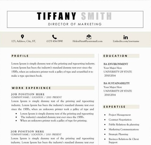 Teacher Resume Sample Template 3